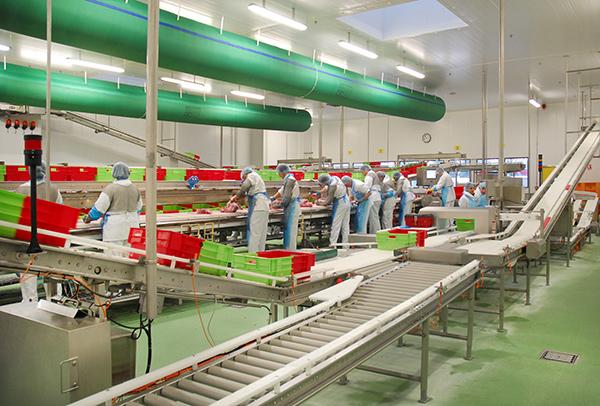 CILS Conveyors